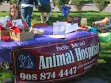 Belle_Meads_Table_2011_Feral_Cat_Fun_Day0021.JPG