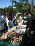 Food_to_eat__2011_Feral_Cat_Fun_Day0027.JPG