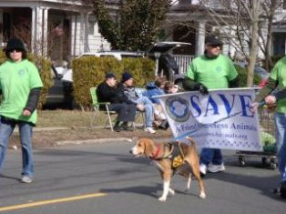 St_Patricks_Parade_SAVE_2012.jpg