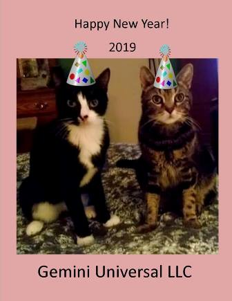 Happy New Year Gemini 2019.jpg