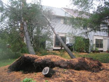 Hurricane_Sandy_2012.JPG
