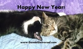 Happy_New_Year_Gemini_Universal_2015.jpg